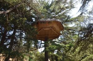 Capanna sugli alberi